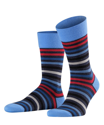 Falke Tinted Stripe Blue