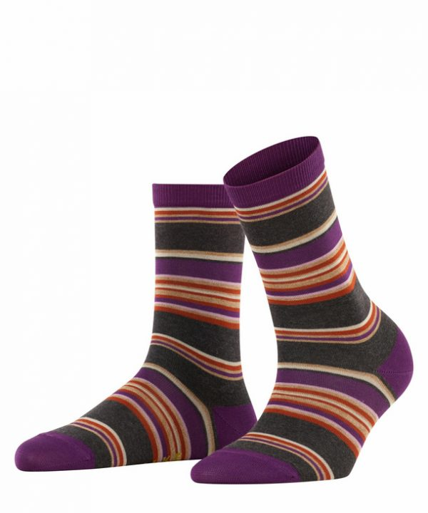 Falke Stripe Socks Purple
