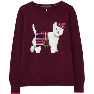 212837_PURPLDOG Joules Miranda Sweater