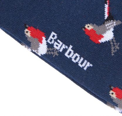 LSO0110NY31 Barbour Robin Socks