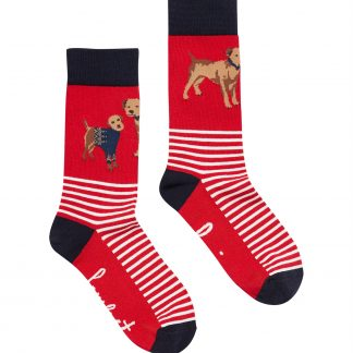 210122_REDDOG Joules Brilliant Bamboo Socks Red Dog