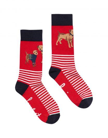210122_REDDOG Joules Brilliant Bamboo Socks Red Dog