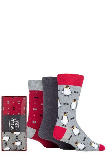 Wild Feet Penguin Socks Gift Set